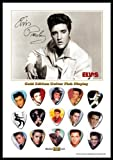 Elvis Presley New Gold Edition Gitarre Plektrum Display With 15 Gitarre Plektren