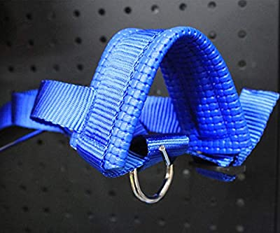 Dearmentor Dog Muzzle Nylon Soft Dogs Prevent Anti Biting, Barking and Chewing, Adjustable Loop (XL, Blue) by Dearmentor