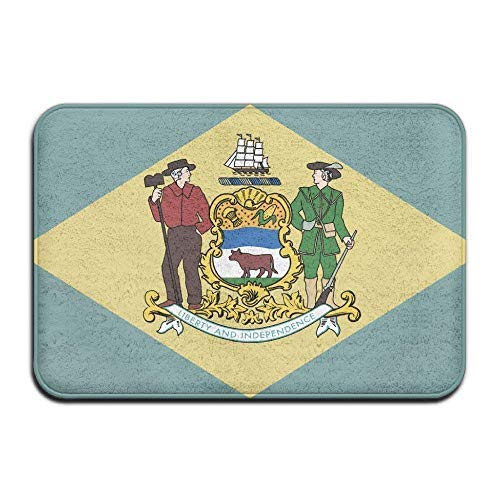 Wolanim Home Doormat Delaware State Flag Door Mats Outdoor Mats Entrance Mat Floor Mat (L23.6