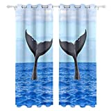 Humpback Whale Diving Simpatico Subacqueo Stampa solo lato Oscuranti Tendaggi Tende Trattamento delle finestre Tenda da doccia Pannelli la camera da letto Soggiorno Cucina Bagno 55 X 78 Inch 2 pezzi
