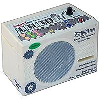 Sound Labs Tanpura Raagini Elektronische Tanpura Tambura