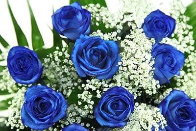 Blumenstrauß blau - mit 10 blauen Rosen - Blumenversand ROSENBOTE.de von Blumenversand Rosenbote auf Du und dein Garten