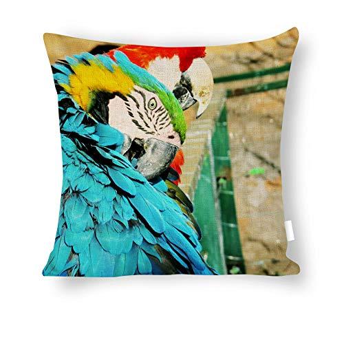 Dartys Pillow Cover ave-Macaw-Parrot-Zoo-Animal-Exotic-birdBaumwolle und Leinen Pillowcase Klassische Mode Streifen Bunte 18x18zoll 45x45cm liebevollen Kissen Decken -