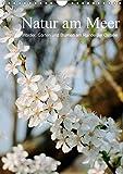 Natur am Meer - Wälder, Gärten und Blumen am Rande der Ostsee (Wandkalender 2018 DIN A4 hoch): Die Mecklenburger Ostseeküste und ihr Umland werden ... ... [Kalender] [Apr 01, 2017] Schneekloth, Heidi