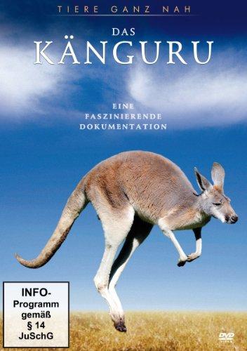 Preisvergleich Produktbild Das Känguru