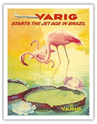 brasil-varig-inicia-el-jet-edad-en-brasil-flamencos-rosados-flamingo-rosados-wade-en-un-estanque-de-