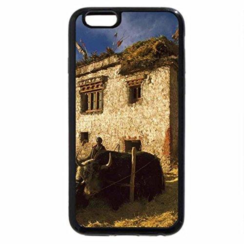 iPhone 6S / iPhone 6 Case (Black) farmers in ladakh north india
