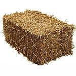 Fleet Farm™ Handy Size Barley Straw Bale - Feed Quality (90cm x 50cm x 40cm) 6