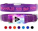 Taglory Personalised Dog Collar Embroidered/Custom Led Collars Light with Pet Name and Number
