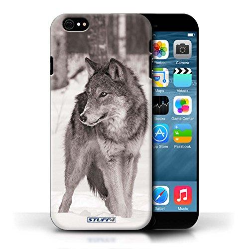 Hülle Für Apple iPhone 6S Zoo-Tiere Wolf Design Transparent Ultra Dünn Klar Hart Schutz Handyhülle Case