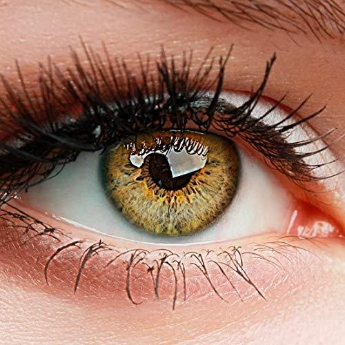 """ELFENWALD farbige Kontaktlinsen ohne Stärke, Produktreihe """"INTENSE"""", ein paar weiche Farblinsen OHNE Aufbewahrunsbehälter, natürlicher Look (Ocker/Hellbraun)"""