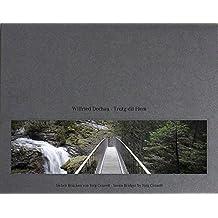 Trutg dil Flem – Seven Bridges by Jürg Conzett