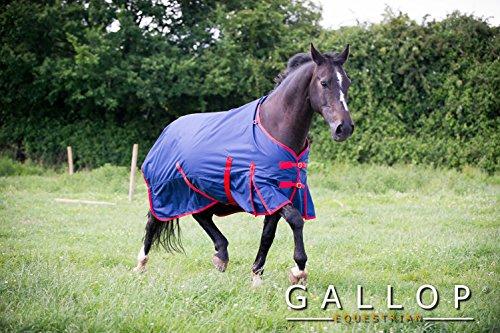 Gallop Trojan - Manta de caballo sin cuello, 200g - EU 160cm