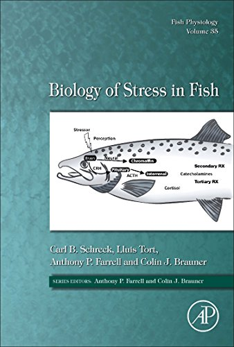 Biology of Stress in Fish (Fish Physiology) por Carl B. Schreck Dr.