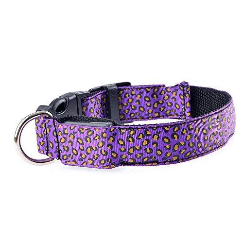 sijueam Leopard Muster LED Hundehalsband, Verstellbar blinkendes Halsband Leuchthalsband Sicherheit Hund Halskette Loop Nylon Welpen Illuminating, mit verstellbare Schnalle, 6Farben Violett Type 1 Purple-M M (Fluorescent Cage Light)