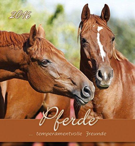 Pferde 2016 - Horses - Postkartenkalende...