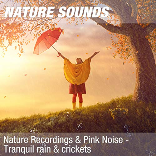 Nature Recordings & Pink Noise - Tranquil rain & crickets