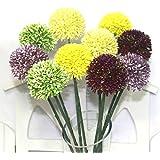semillas 100pcs Allium giganteum, gigante cebolla (Allium giganteum) de semillas, semillas de flores bonsái, la tasa de 95% en ciernes, planta para el hogar y el jardín Claro