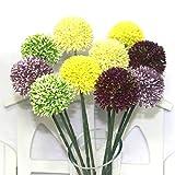 100pcs Allium Giganteum Samen, Riesenzwiebel (Allium giganteum) Samen, Bonsai-Blumensamen, angehende Rate 95%, Pflanzen für Heim & Garten Klar