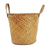 iBaste Aufbewahrungskorb aus Seegras Geflochten Korb mit Griff Einkaufskorb Blumentöpfe Aufbewahrungskorb für Spielzeug Wäsche Lagerung Nordischer Stil
