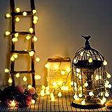 Catena Luminosa,10m Lampadina Illuminazione 100 LED Bulbo Lampade Ghirlanda Decorazioni Casa, Festa, Matrimonio, Giardino, Natale Flash Adattatore [Classe di efficienza energetica A+++]