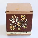 Geschenk-Anzuchtset 'Fleur de chocolat' - Schokoladenblume