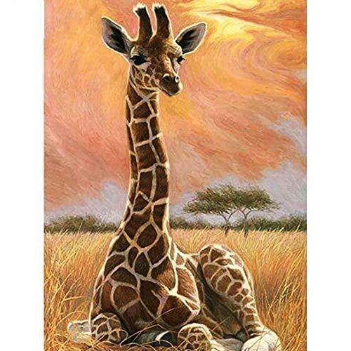 HDWALLART 5D DIY Diamant Malerei Giraffe Voller Quadrat Bohrer Diamant Stickerei Tier Harz Strass Mosaik Malerei Wohnkultur, 60x80 cm