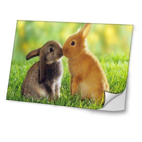 Wilde Tiere 10029, Bunny, Skin-Aufkleber Folie Sticker Laptop Vinyl Designfolie Decal mit Ledernachbildung Laminat und Farbig Design für Laptop 13.3