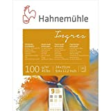 Ingresblock 9 Farben 100g/m², 24x31cm, 20Blatt