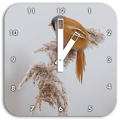 kleiner Vogel auf Weizen im Winter, Wanduhr Quadratisch Durchmesser 28cm mit weißen eckigen Zeigern und Ziffernblatt, Dekoartikel, Designuhr, Aluverbund sehr schön für Wohnzimmer, Kinderzimmer, Arbeitszimmer