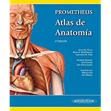 Prometheus atlas de anatomía / Atlas of Anatomy