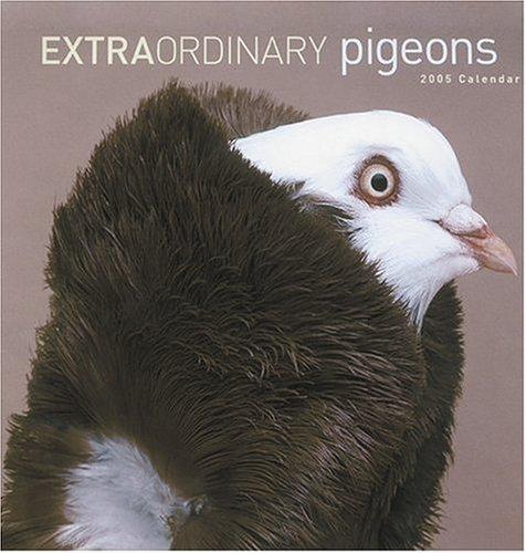 Extraordinary Pigeons 2005 Calendar