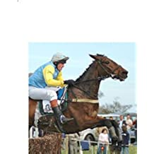 The Sure Fire Horse Racing System (English Edition)