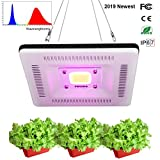 FECiDA Best LED Grow Lights Spettro Completo, Impermeabile COB LED Grow Light Lamp, 300W CFL e HPS e CMH Grow Lights Equivalent, Ultra-Thin e Lightweight per Piante da Interno