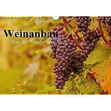 Weinanbau. Von der Traube zum Wein (Wandkalender 2017 DIN A4 quer): Schöne Impressionen vom interessanten Weinbau (Geburtstagskalender, 14 Seiten ) (CALVENDO Natur)