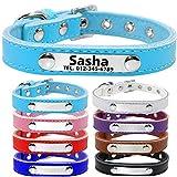 TagME Personalisierte Hundehalsbänder aus Leder/Weich Gepolstertes Hundehalsband/Löschen Sie Name, Telefonnummer und Mikrochipnummer/Für mittlere und große Hunde/Himmelblau