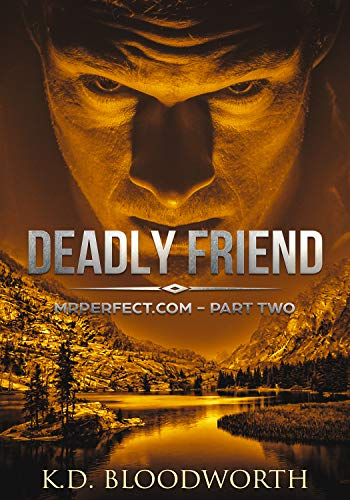 Deadly Friend: MrPerfect.com: Book Two (Mr Perfect.com 2) by [Bloodworth, K.D.]