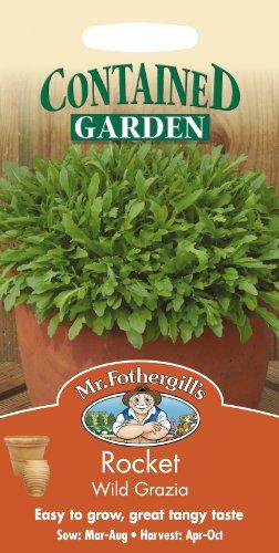 Mr. Fothergill's Seeds 13627 Lot de 500 graines de roquette Wild Grazia