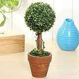 Inovey Plante Artificielle en Pot De Jardin en Plastique Herbe Boule Topiaire Arbre À La Maison Décoration De Bureau - #2