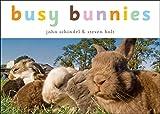 Busy Bunnies (A Busy Book)