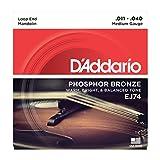 Daddario EJ74 Phosphor Bronze Medium   Mandolinensaiten   NEU