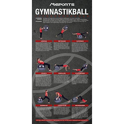 MSPORTS Übungsposter für den Gymnastikball | ca. 44 x 21 cm | 9 Übungen
