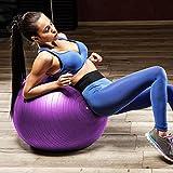 Pelota de Ejercicio, HiHiLL Fitness Ball de 65cm con Bomba, Profesional Antiexplosión y Antideslizante, para Yoga, Pilates enCasayGimnasio, Adecuado para Mujeres, Hombres, Mujeres Embarazadas