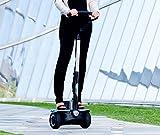 ION Rider eléctrico BI220 PRIME vehículo eléctrico velocidad máxima: 18 Km autonomía: 25 Km