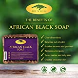 (453g) Raw African Black Soap with Coconut Oil and Shea Butter - Body Wash, Shampoo and Face Wash - Helps Clear Dry Skin, Acne, Eczema, Psoriasis - Authentic Organic Homemade Soap Bar from Ghana