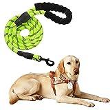 Litthing Hundeleine aus Reflektierendem Nylon Sicherheit für Große oder Mittlere Hunde (grün)