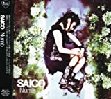 Numb by Saico (2007-06-06)