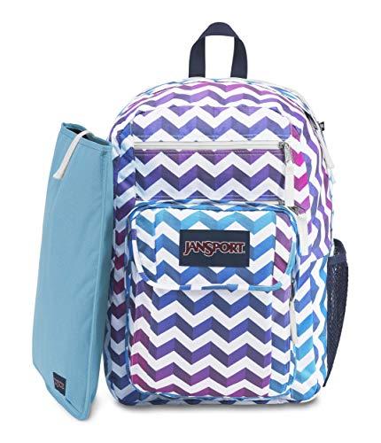 JanSport JS00T69D35Q Digital Student Laptop Backpack, Prismpinkprettyposey