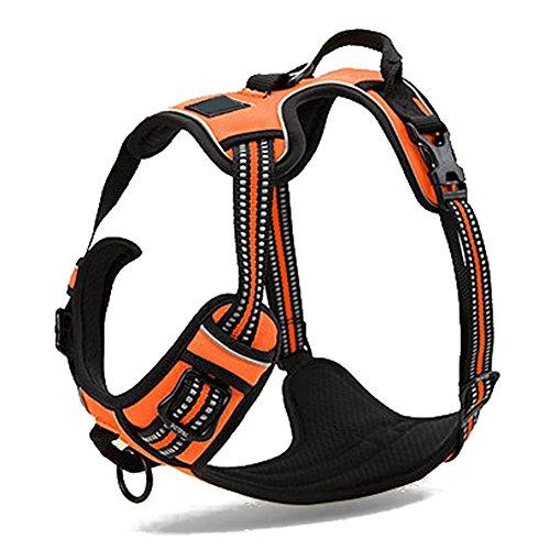 REXSONN® Ultra-Soft Hundegeschirr Softgeschirr Brustgeschirr Hunde Geschirr Sicherheitsgeschirr pet dog vest Harness - 3