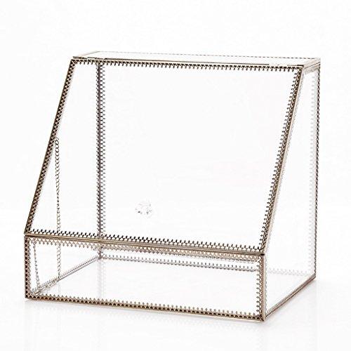 HWF Boîte de rangement cosmétique Copper Edge Verre Boîte de rangement cosmétique Transparent Copper Side Cosmetic Case Boîte de rangement pour ordinateur de bureau Organisateur